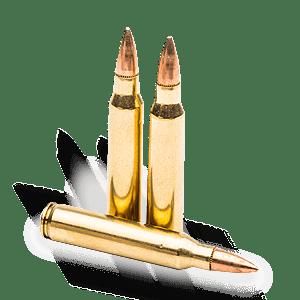 ammunition shooting streicher s